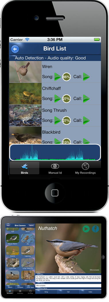 BirdSongId: Bird Song Identification